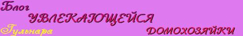 Блог увлекающейся домохозяйки