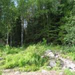 Карельская природа