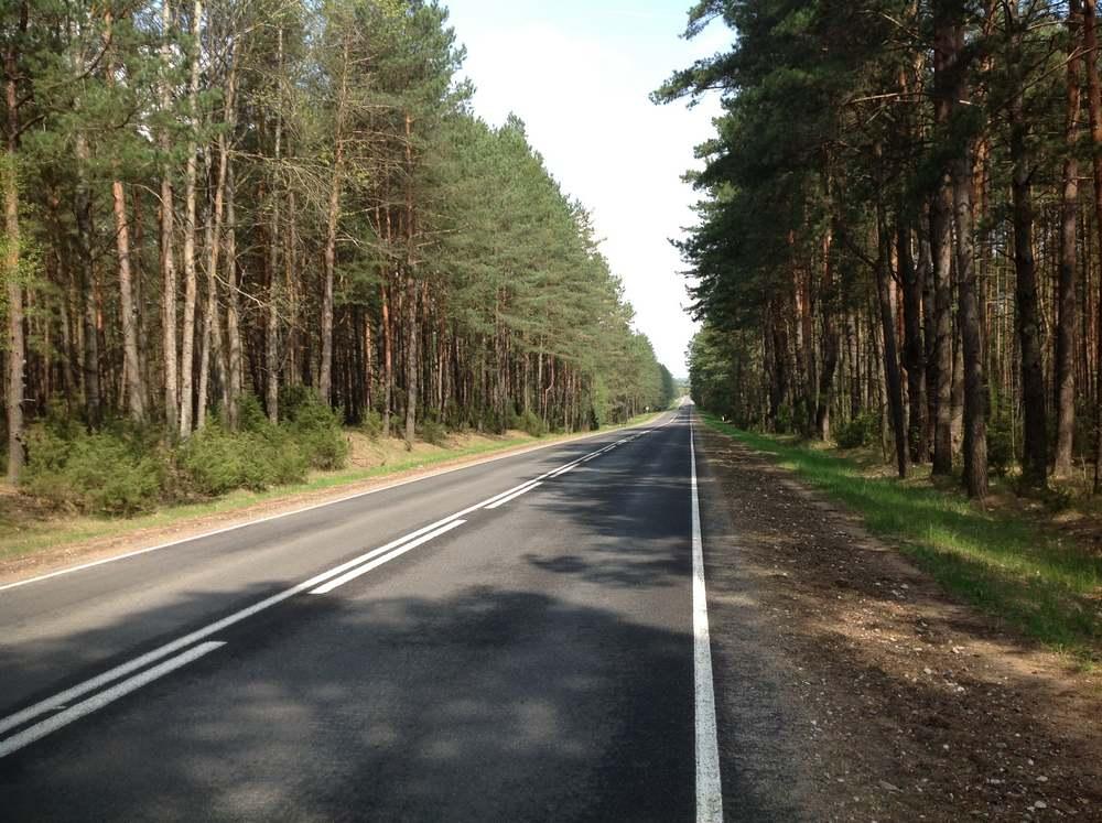 Дорога в Беловежскую пущу