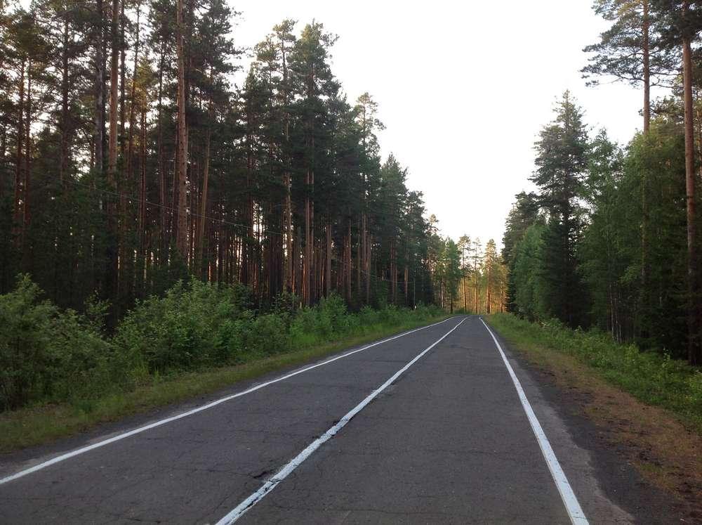 Дорога к заповеднику Кивач