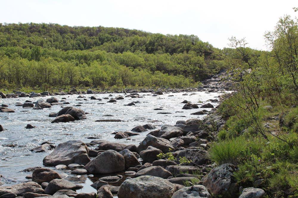 Пьяный ручей полуостров Рыбачий
