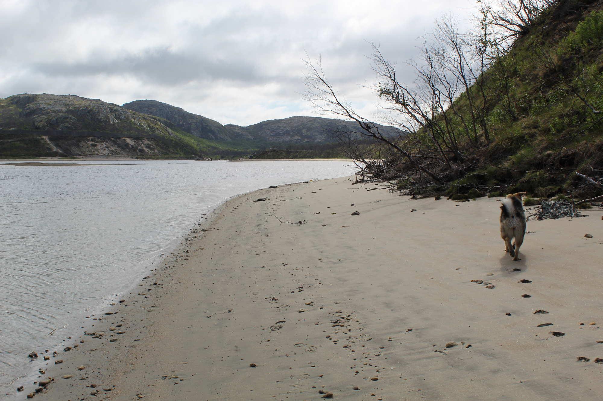 Река Титовка Мурманская область