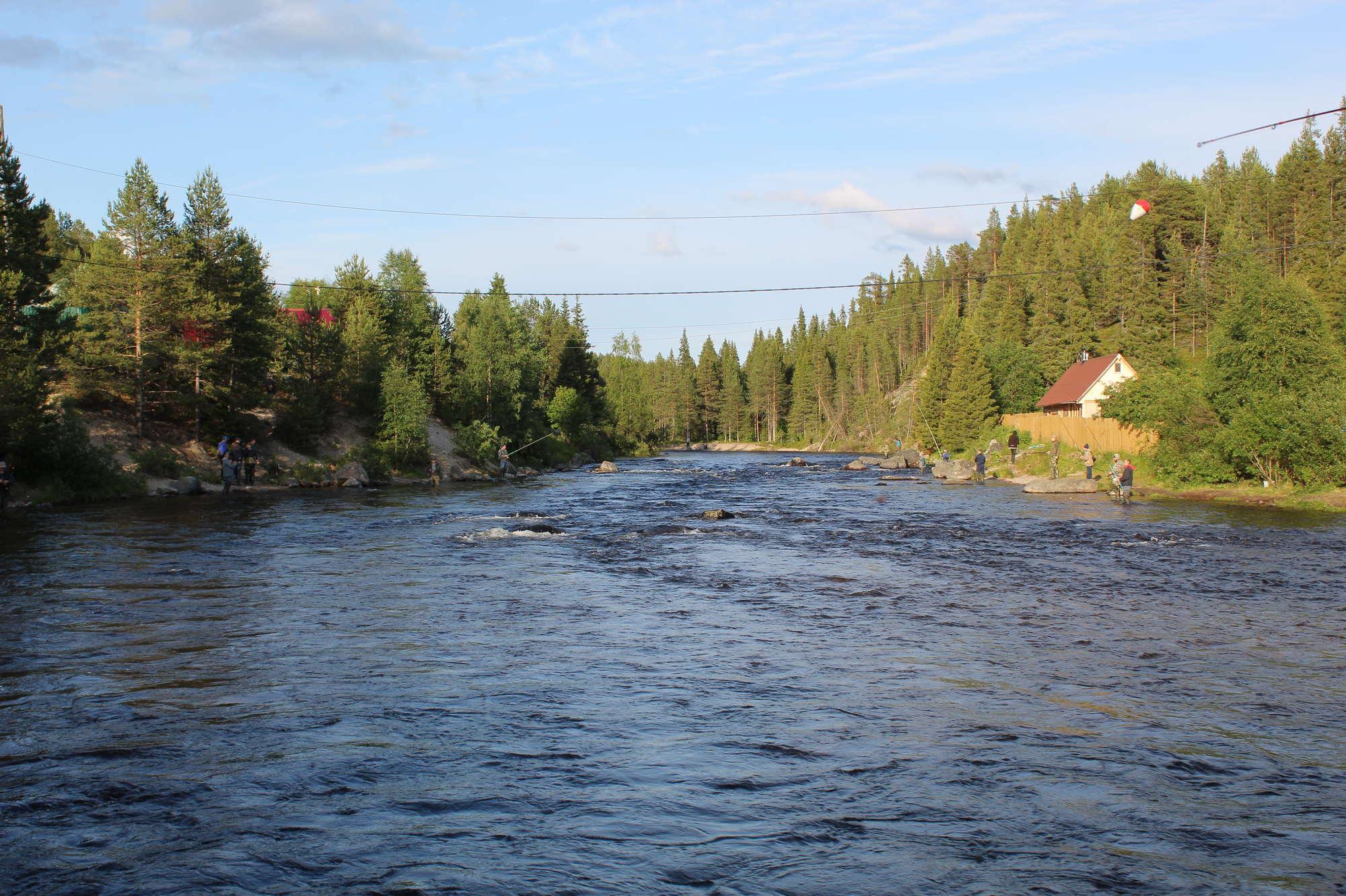 Ловля горбуши на реке Колвица